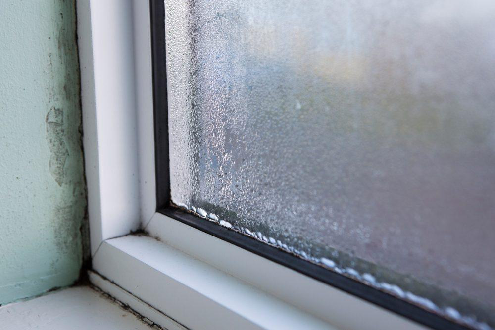 Huurteinen ikkuna. Ikkunan ympärille on alkanut ilmestymään kosteusvaurioita.