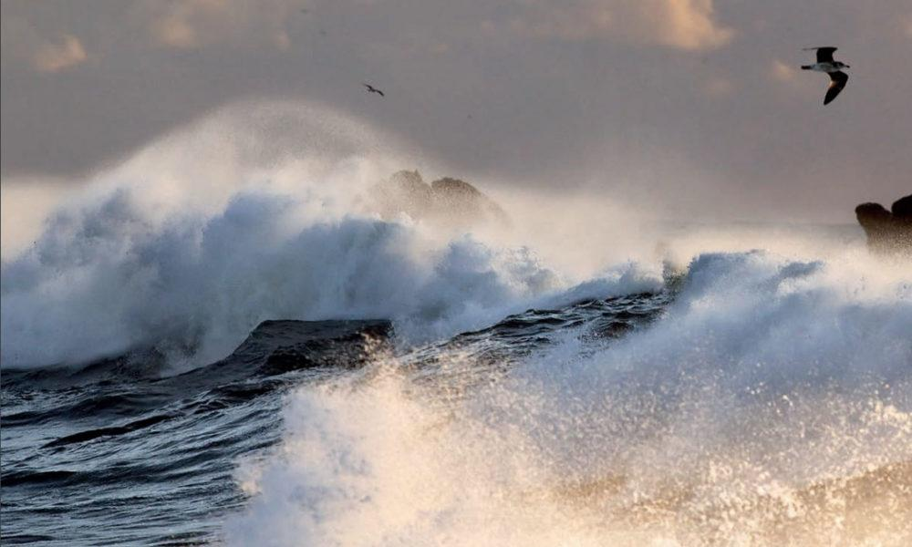 tuoksuton myrskyävä meri